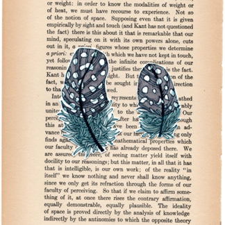 2 Feathers on a Book Page by April Marie Mai